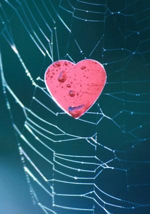 social media: men have a heart