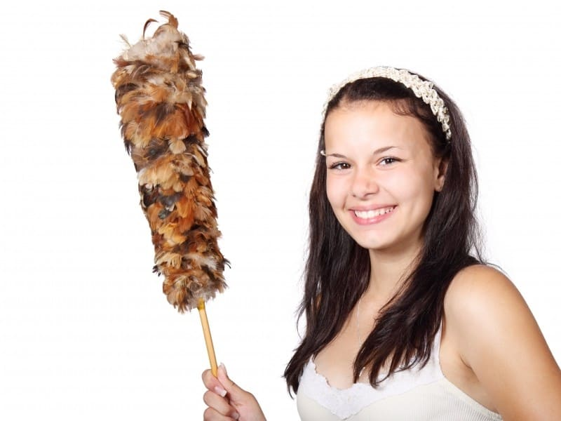 brush-cleaner-cleaning-cute-duster-feather-female