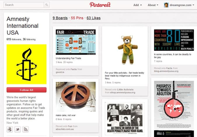 pinterest brand pages amnesty international 41 Great Examples of Pinterest Brand Pages
