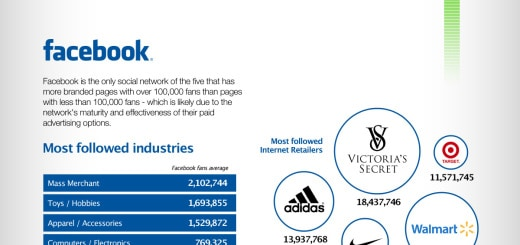 top 250 internet retailers on social media infographic
