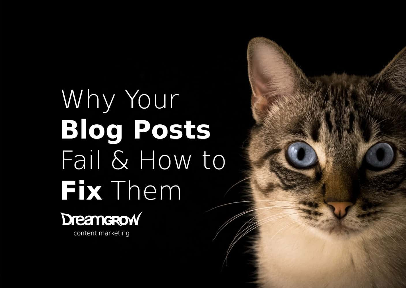 dont's of blogging