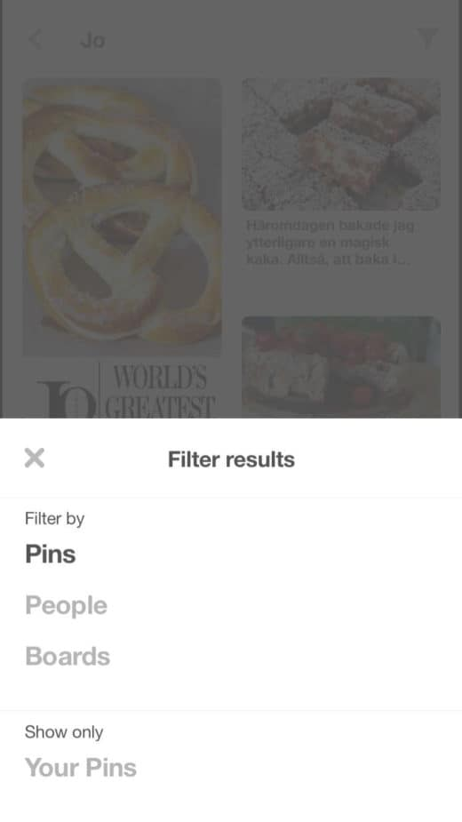 pinterest visual search filter