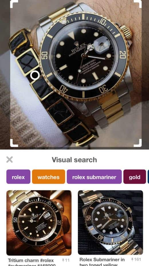 pinterest visual search results