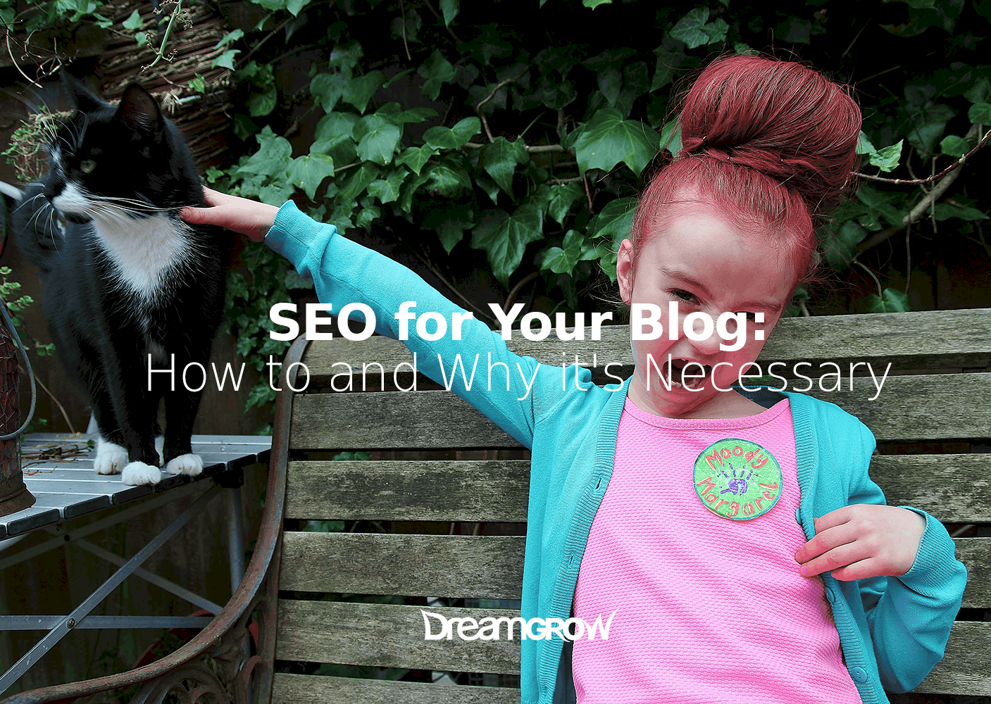 seo-for-blog-dreamgrow