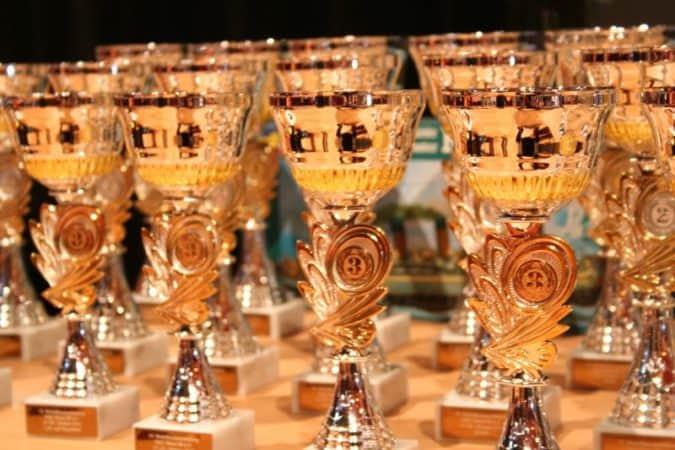 cup-winner-award