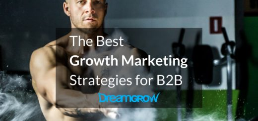 growth-strategies-b2b-cover