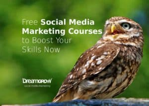 11 free social media and marketing ebooks and reports dreamgrow 2018 11 free social media marketing courses to boost your skills now fandeluxe Choice Image