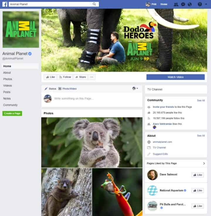 facebook page cover image animal planet
