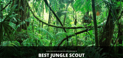 best junglescout alternatives reveiwed