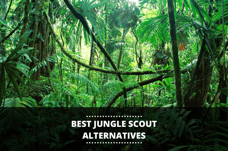 best junglescout alternatives reveiwed