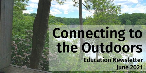 Education Newsletter June 2016